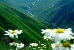 صور خلفيات شاشه جوال للبنات كيوت وجميلة سوداء ايفون Background Images Beautiful Nature Nature Photography Nature Photos