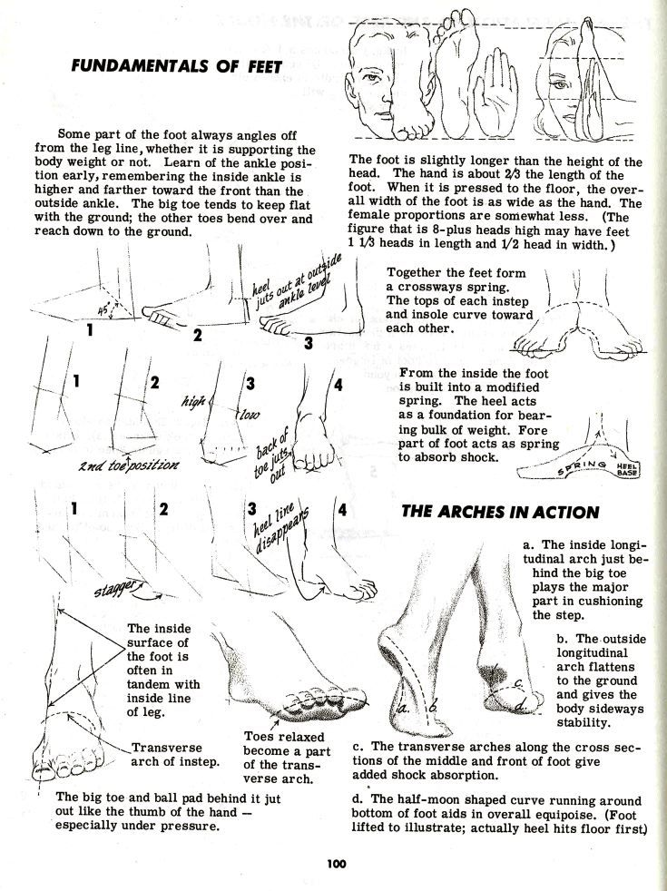 Character and Creature Design Notes: Foot (and Shoe) Reference Part ...