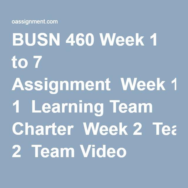 busn 460 week 4 video analysis