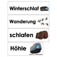 Projekt Tiere Im Winter Kindergarten Und Kita Ideen Aktion Igel