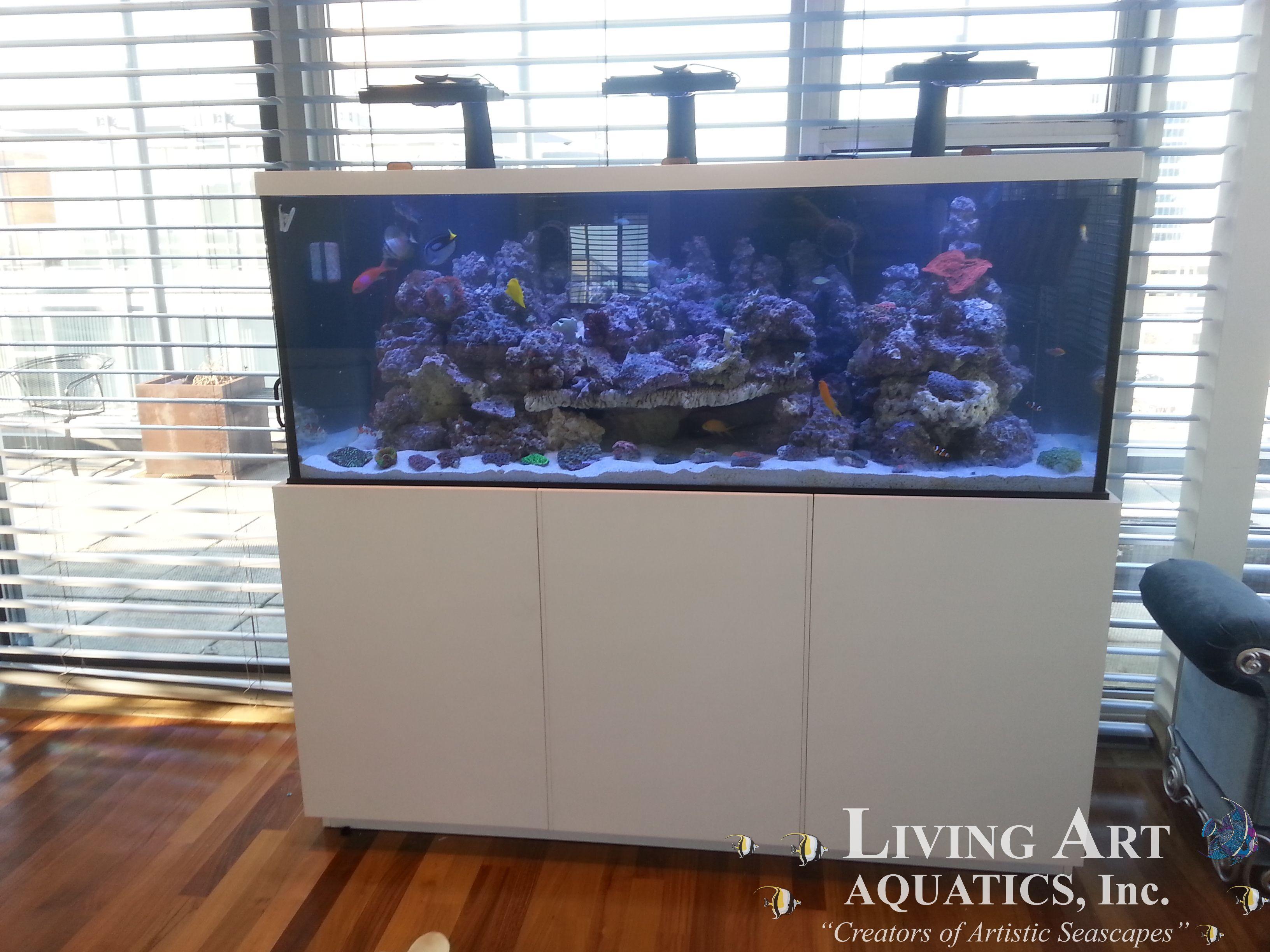 Aquariums, Art, Art Background, Fish Aquariums, Fish Tanks, Kunst, Art  Supplies, Artworks