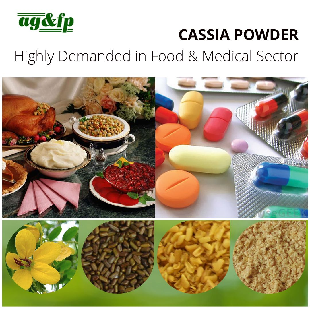 Cassia Powder Medical Properties & Applications in Varied