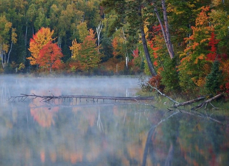 misty fall colors Grand rapids Mn Scenic byway, Weather