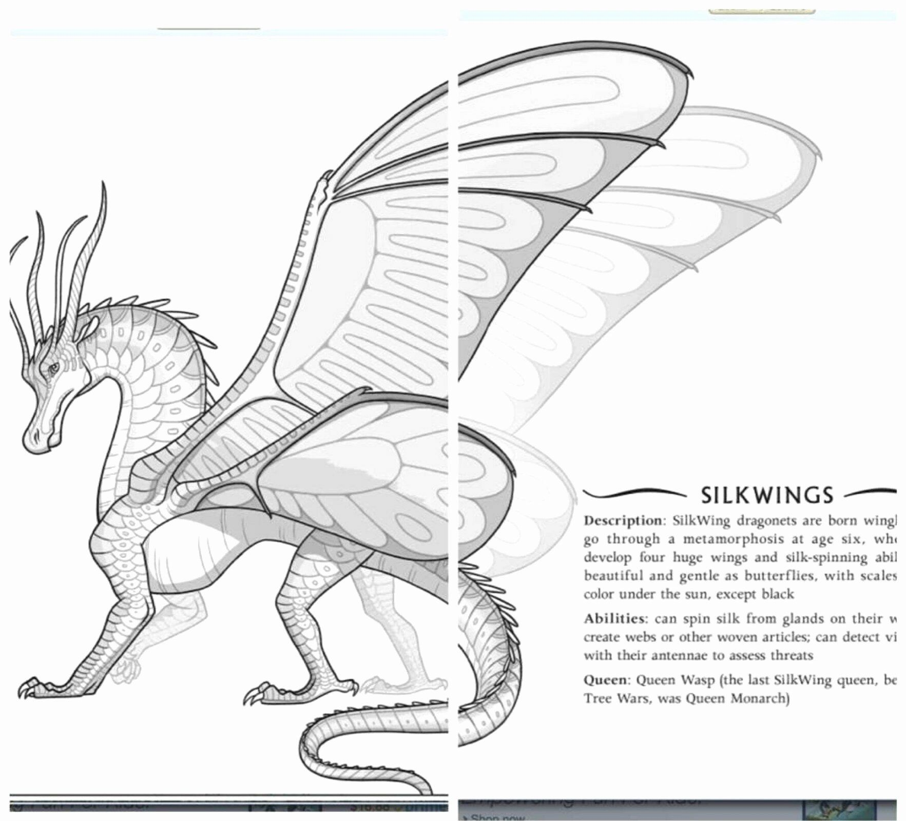 Wings Of Fire Printable Coloring Pages