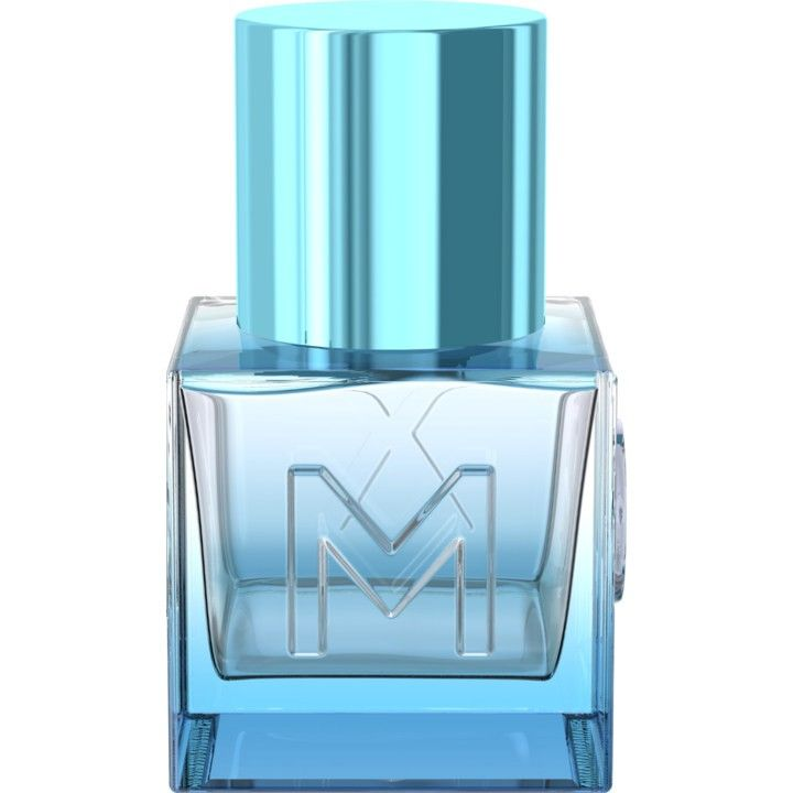 Mexx парфюм мужской