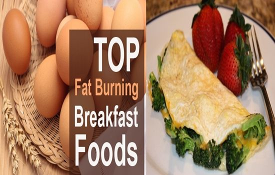 Top rapid weight loss diets