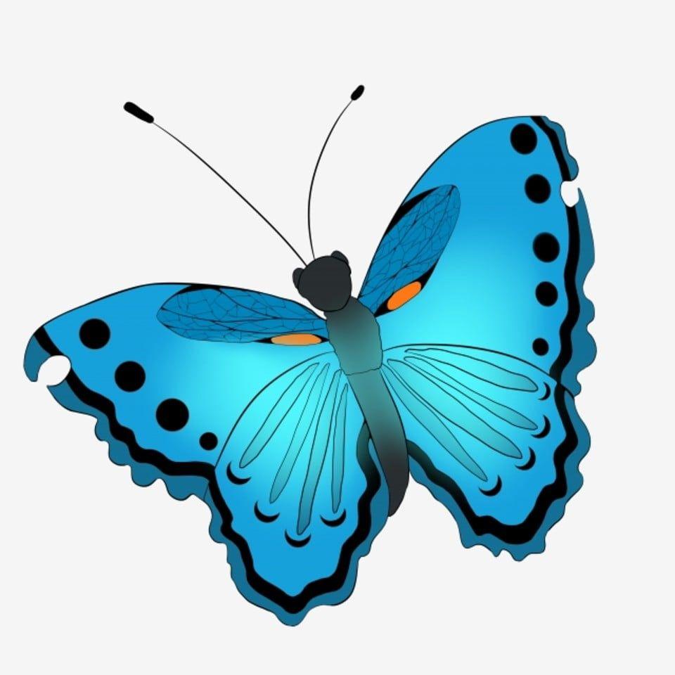 Mariposa Azul Ilustracion De Dibujos Animados Ilustracion De Mariposa Roto En Mariposas Ilustracion Bonita Mariposa Azul Png Y Psd Para Descargar Gratis Pn Ilustracion De Mariposa Mariposa Azul Ilustracion De
