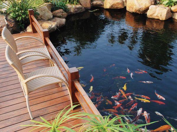Koi Pond Design Ideas image of small koi pond design ideas koi pond design design ideas Koi