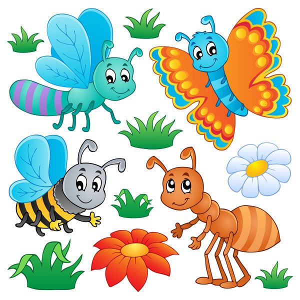 Colorful Cartoon Insects Vector Set