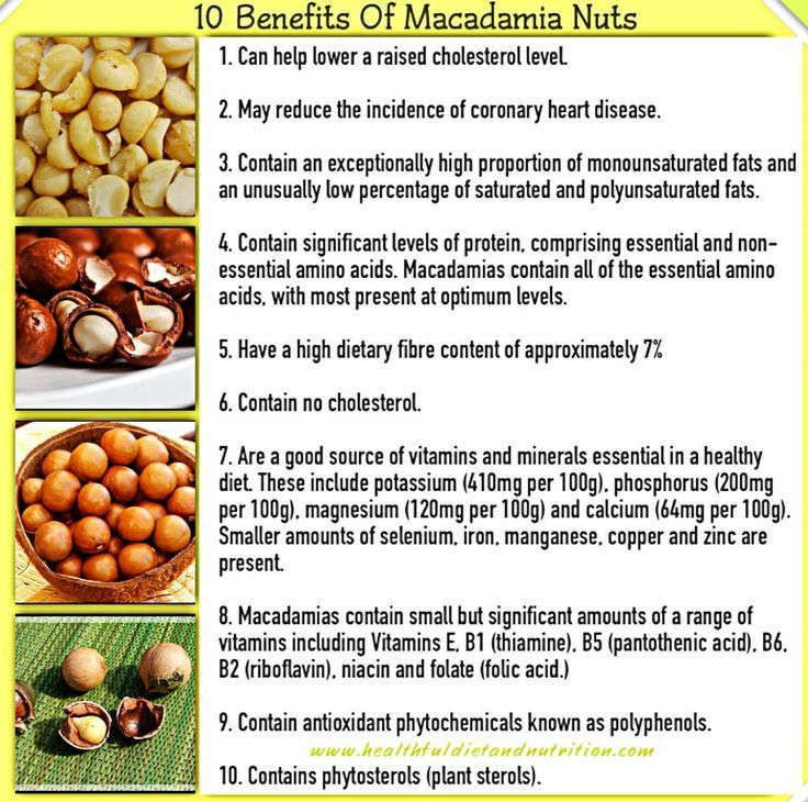 Health Benefits of Macadamia Nuts... | Macadamia nut benefits. Healthy nuts and seeds. Nut benefits