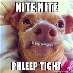 """Résultat de recherche d'images pour """"sleep tight meme"""""""