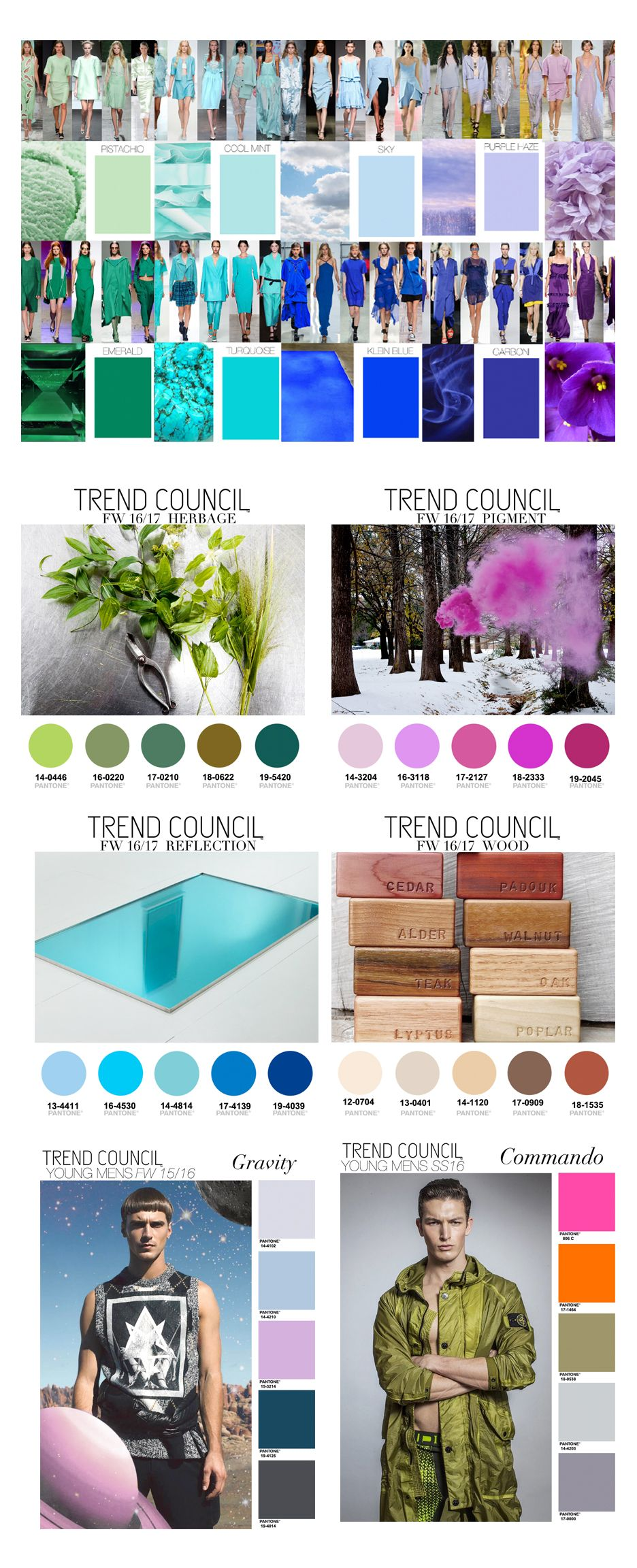 Trend Council | Designs | 2016 trends, 2015 trends, Color ...