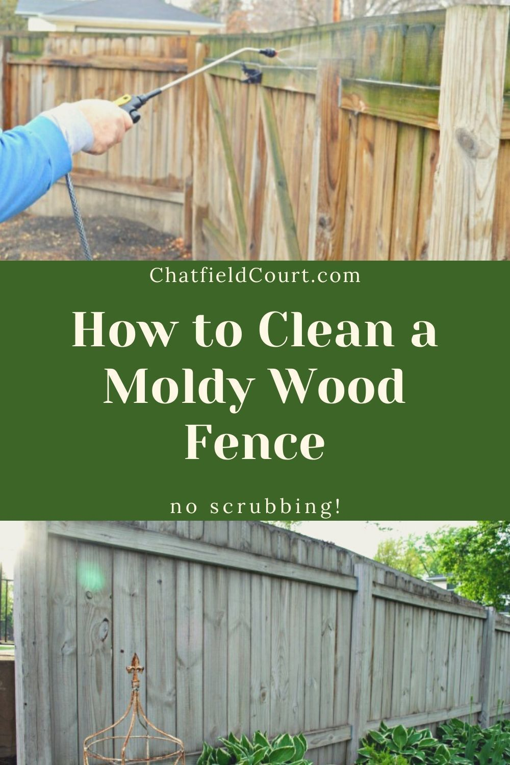 How to easily clean a mold wood fence quickly and without scrubbing.