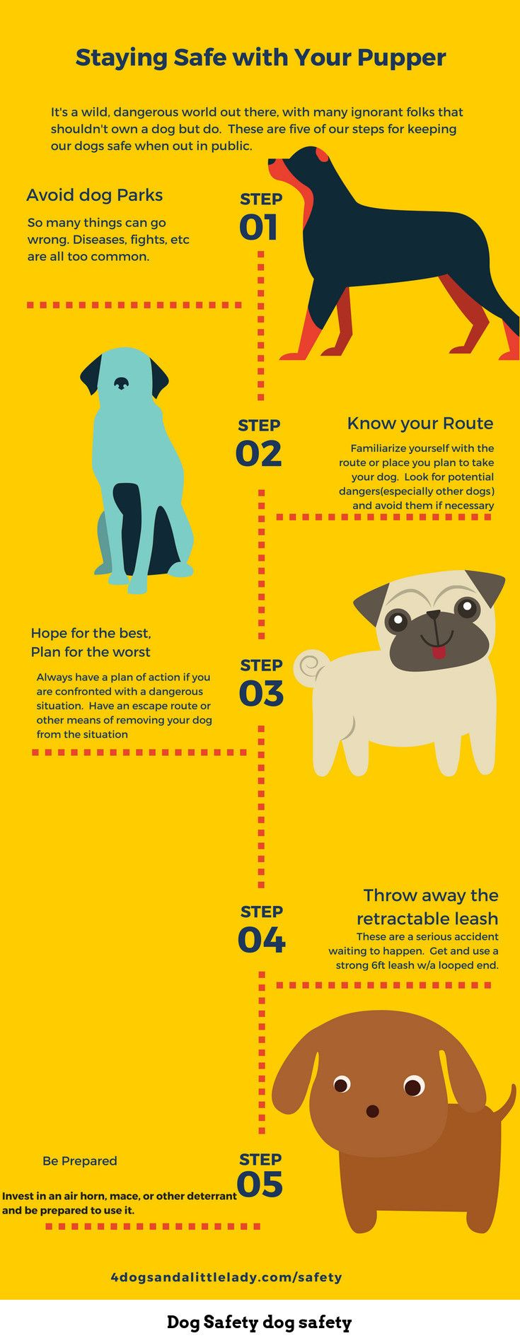 12 Ways To Keep Your Dog Safe From Coyotes Hawks And Other Wild