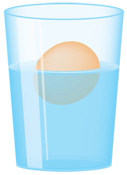 Floating Egg Science Fun Floating Eggs Sink Or Float Egg Experiments