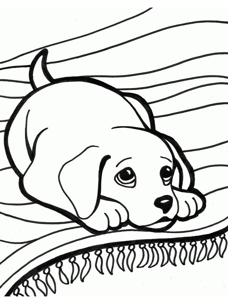 - Dog Coloring Pages. Dogs Are Man's Best Friend. The Relationship Between  Dogs And Humans Began In Preh… In 2020 Horse Coloring Pages, Dog Coloring  Book, Dog Coloring Page