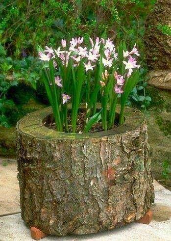 mini+jardins2.jpg (349×491)