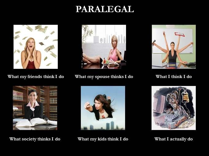 Pin By Penny Alexander Sanders On Quotes No Words Paralegal Humor Legal Humor Funny Animal Quotes