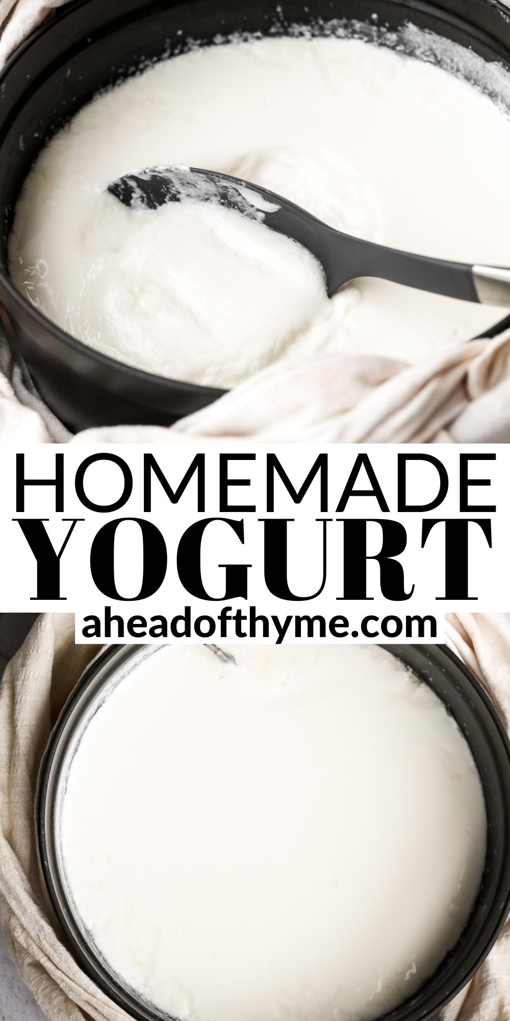 Homemade Yogurt Recipe In 2021 Homemade Yogurt Fruit And Yogurt Parfait Homemade