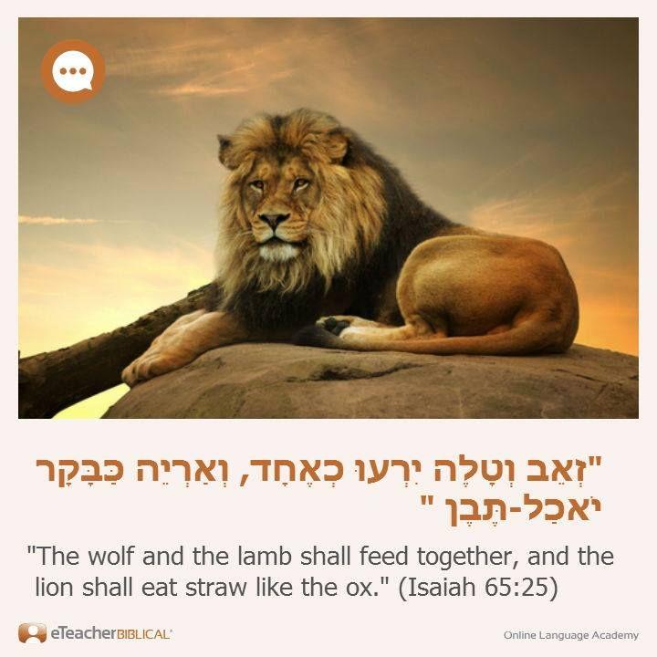 Pin by Sydney Fanning Kjenstad on Bible YHVH God