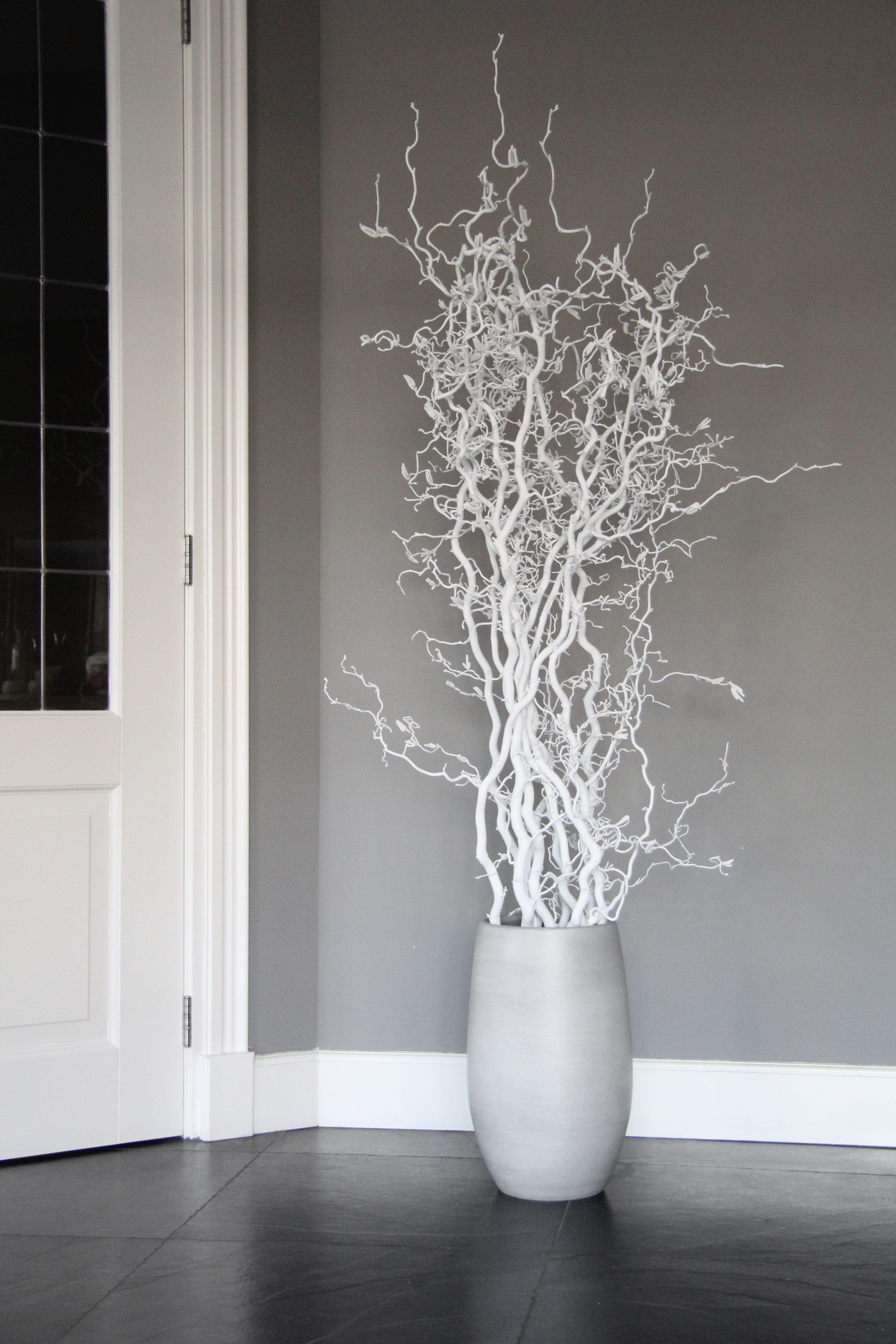 Pin Op Witte Decoratietakken En Witte Stammen
