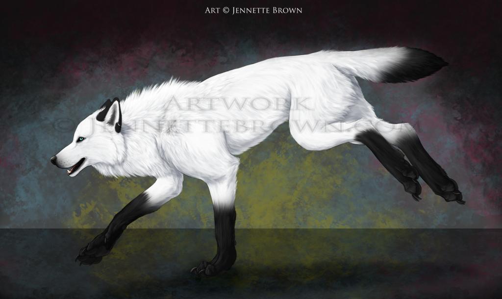 White spirit wolf jennette brown digital fantasy for Utilisation du white spirit