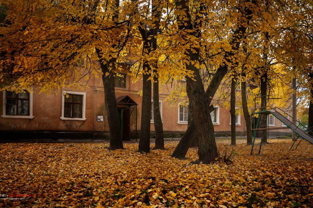 Осень в городе Дубна.(3) Город, Фотографии