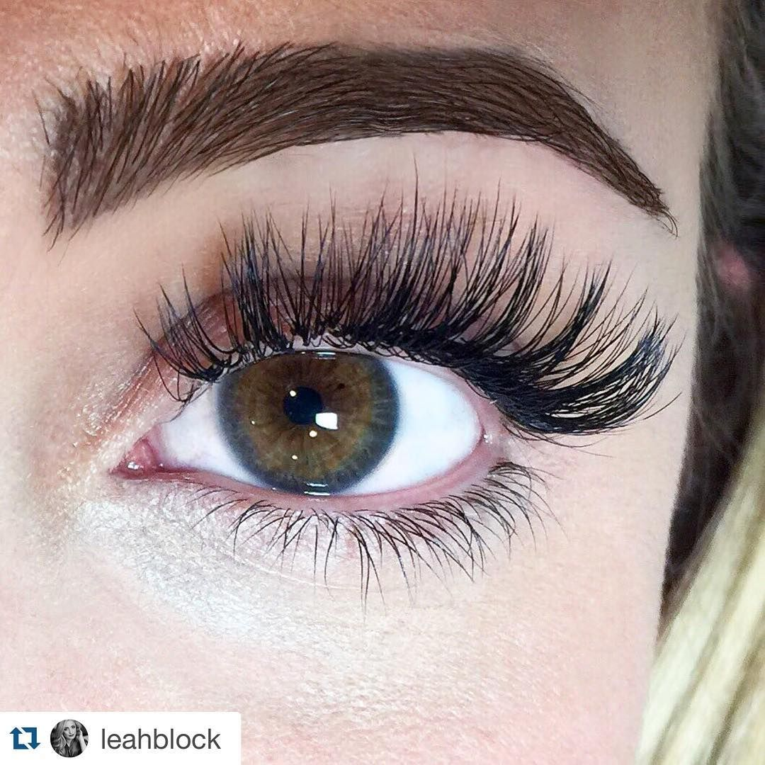 Holly fluff! Beauty Xtreme Lashes at Live Love Lash | Lovely Lashes