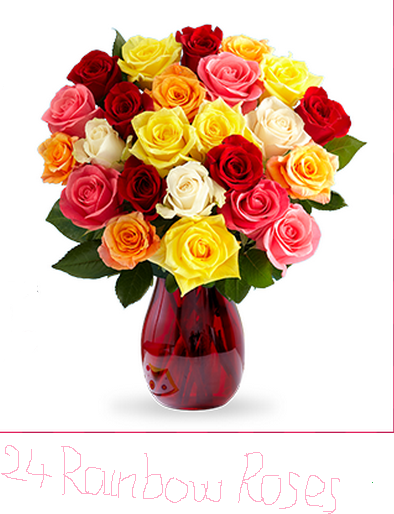 Save 40 Off 24 Rainbow Roses And Get Free Vase From Proflower