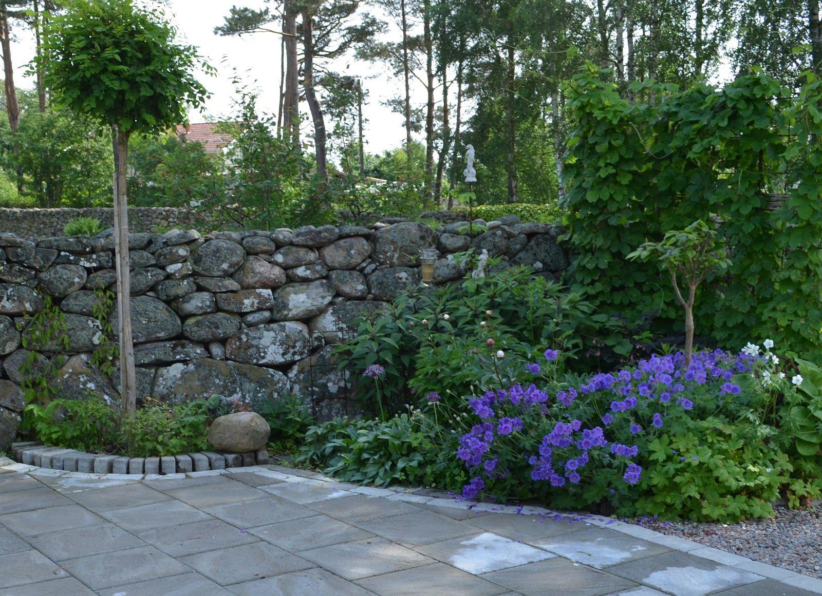 Trädgård plank trädgård : träplank - Sök pÃ¥ Google | TrädgÃ¥rd avskärmning: häckar, murar ...