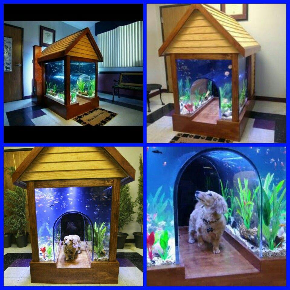 Cool Dog Houses Cool Fish Tanks Diy Dog Stuff