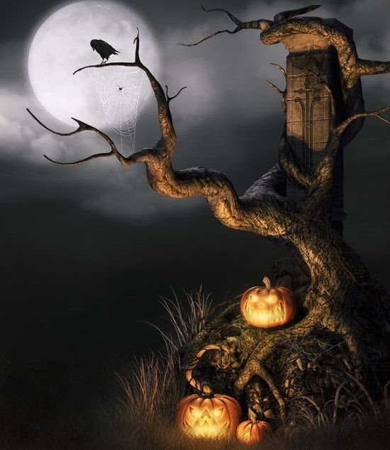 Click to Buy \u003c\u003c Customized dark halloween photography backdrops for - halloween backdrop