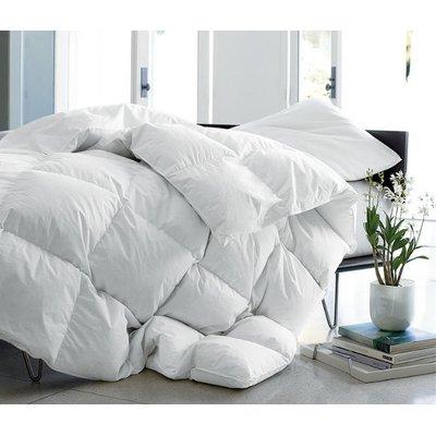 Alwyn Home Heavyweight Winter Down Comforter | Wayfair