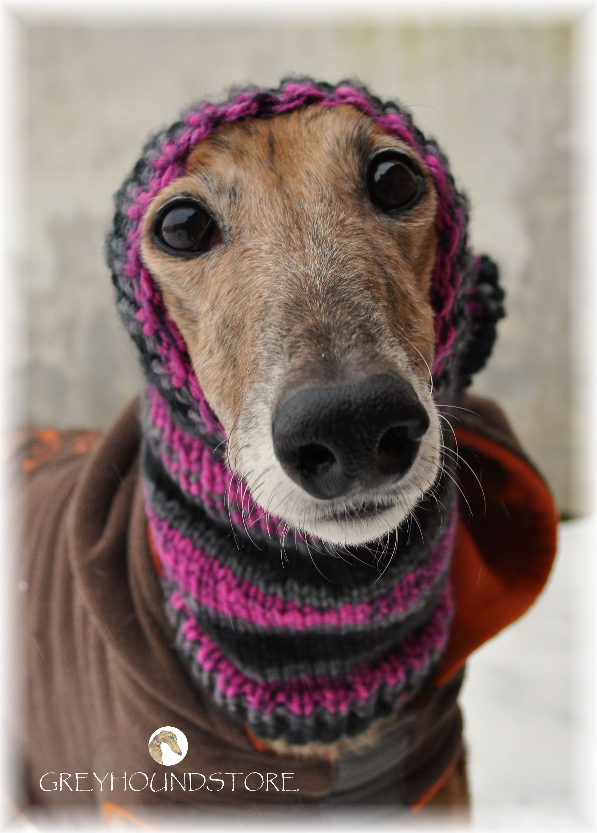 Big doe eyes all dressed up ready to go my belongs i wish i could find a free pattern is one is the hat snood bankloansurffo Images