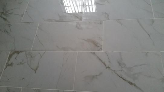 cb2f5d92c2322b MSI Carrara 12 in. x 24 in. Polished Porcelain Floor and Wall Tile ...