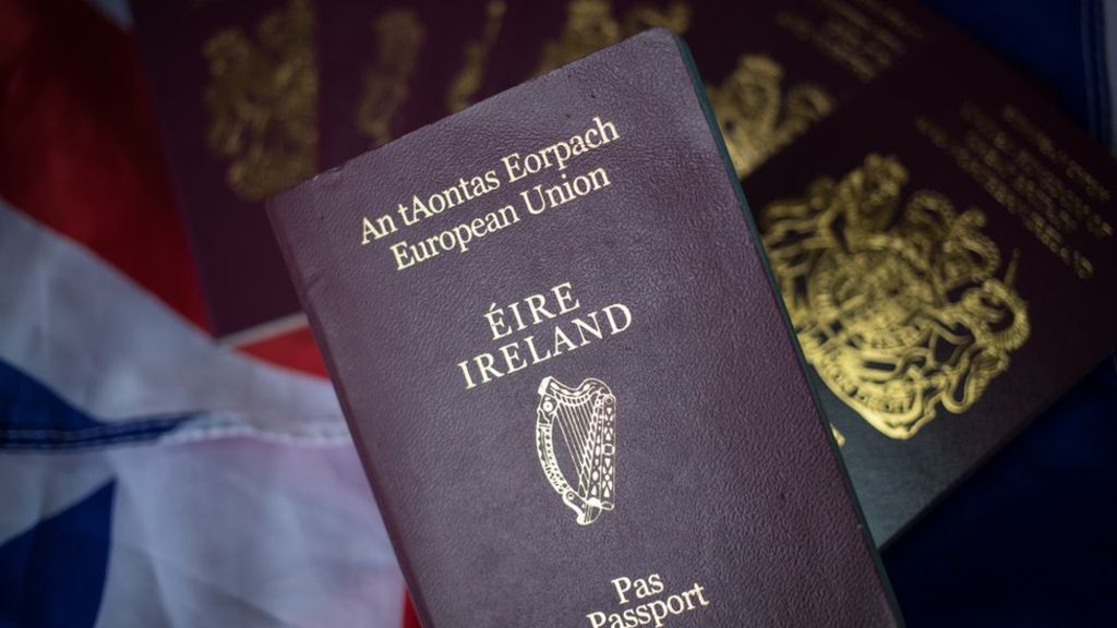 Reality Check Is there a British rush on EU passports