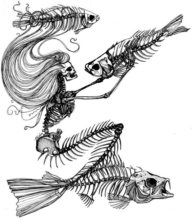 skeletonmermaidcods this wicked sketch is plastered on