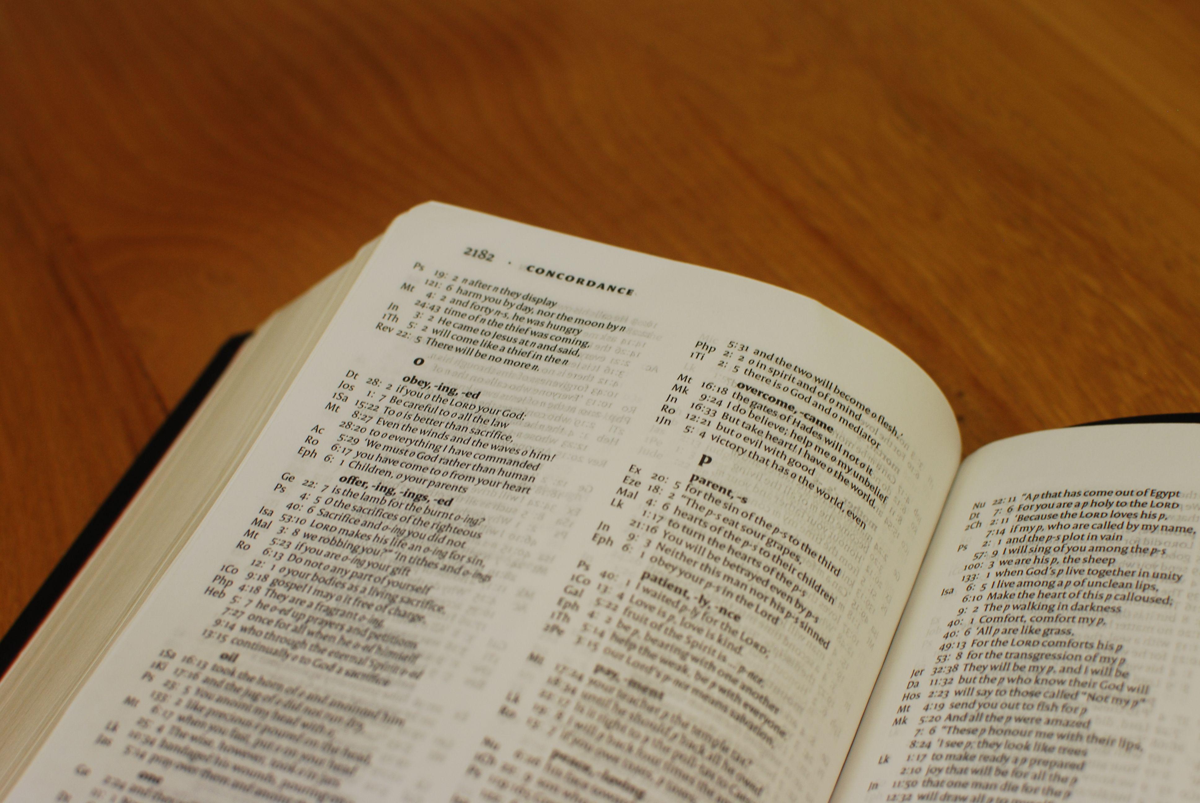 Niv tiny white christening bible 9781444702118 1299 niv niv tiny white christening bible 9781444702118 1299 niv bible latest niv bibles from hodder pinterest niv bible negle Image collections