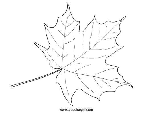 Foglia in autunno da colorare decorazioni pinterest - Modello di foglia per bambini ...