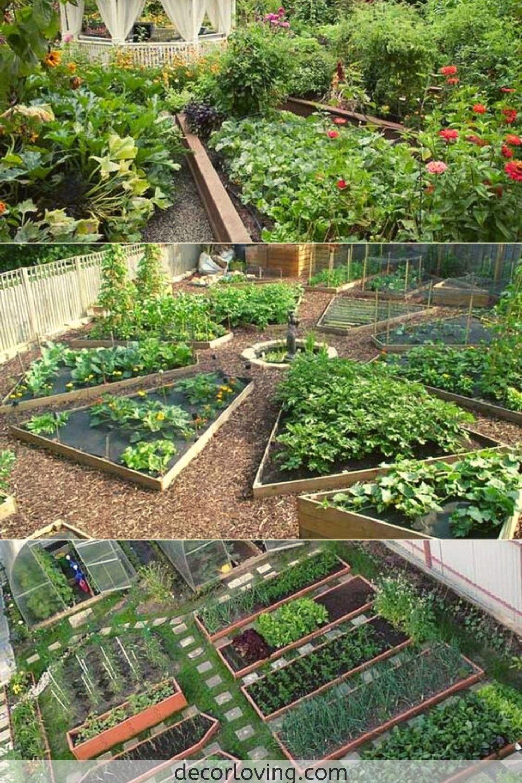 15 Incredible Backyard Vegetable Garden Design Ideas For Home Garden Small Backyard Gardens Garden Layout Backyard Vegetable Gardens