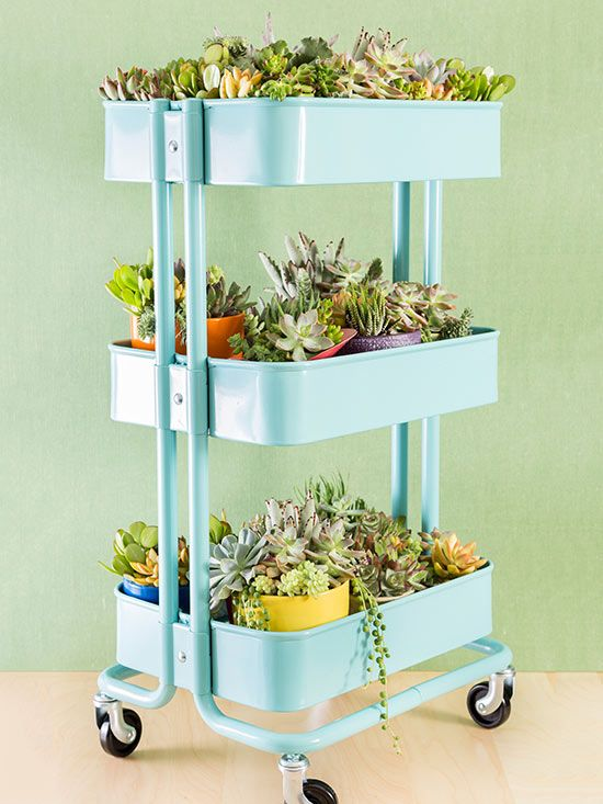 If you're worried about the recent bar cart trend fading away and leaving you with wasted space, don't worry! Your cart can easily be repurposed into a rolling succulent display. Just add mesh for drainage, then fill the compartments with soil. Finish by laying moss onto the surface and plant your favorite varieties of succulents and flowers./