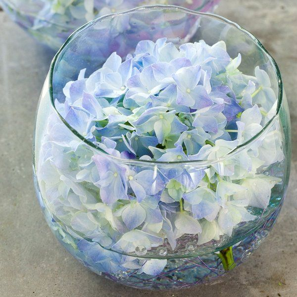 Boule vase vase boule pinterest vase boule vase et for Grand aquarium rond