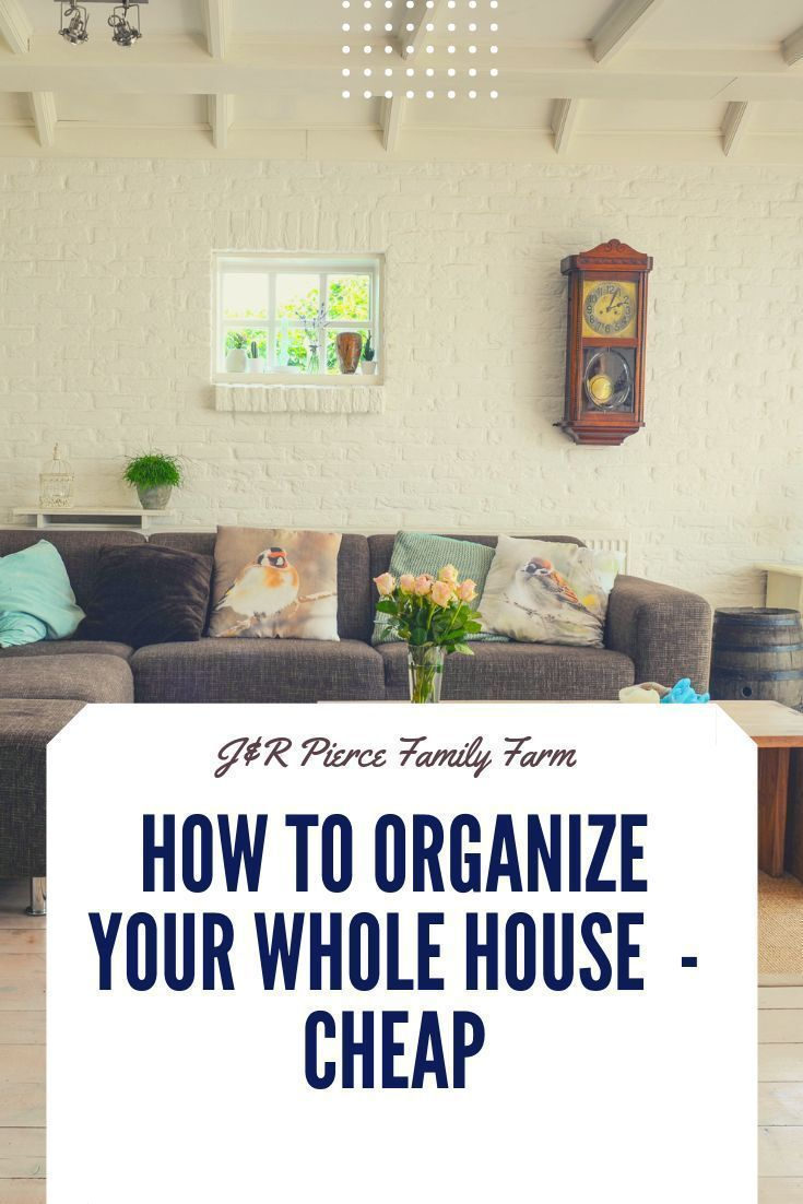Ready to get your home organized and clean this summer? These are some of the best organization tools you can buy  - all for $1 at the Dollar Tree!  #moneysavinghacks #savemoney #organizecheap #organizeforfree #dollartreeorganization #dollarstoreorganization #summerhomeorganization Ready to get your home organized and clean this summer? These are some of the best organization tools you can buy  - all for $1 at the Dollar Tree!  #moneysavinghacks #savemoney #organizecheap #organizeforfree #dollar #summerhomeorganization
