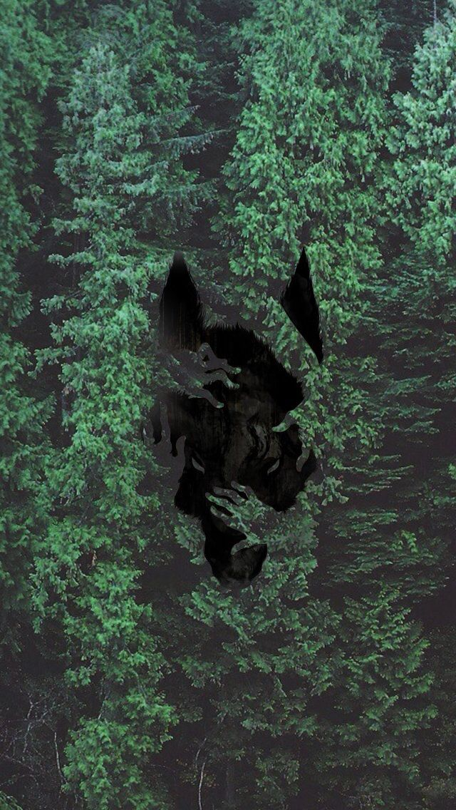 wolf iphone wallpaper iphone wallpaper iphone wallpapers 8538