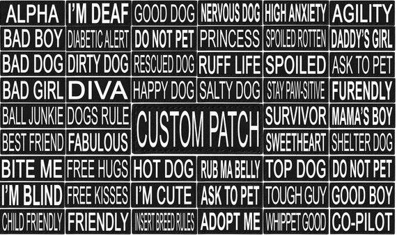 Personalized Dog Mesh Vest Harness With Custom Velcro Brand