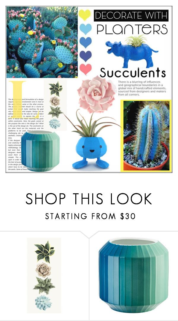 """Decorate with Planters: Cacti"" by pat912 ❤ liked on Polyvore featuring interior, interiors, interior design, home, home decor, interior decorating, Rosenthal, Home, plants and polyvoreeditorial"