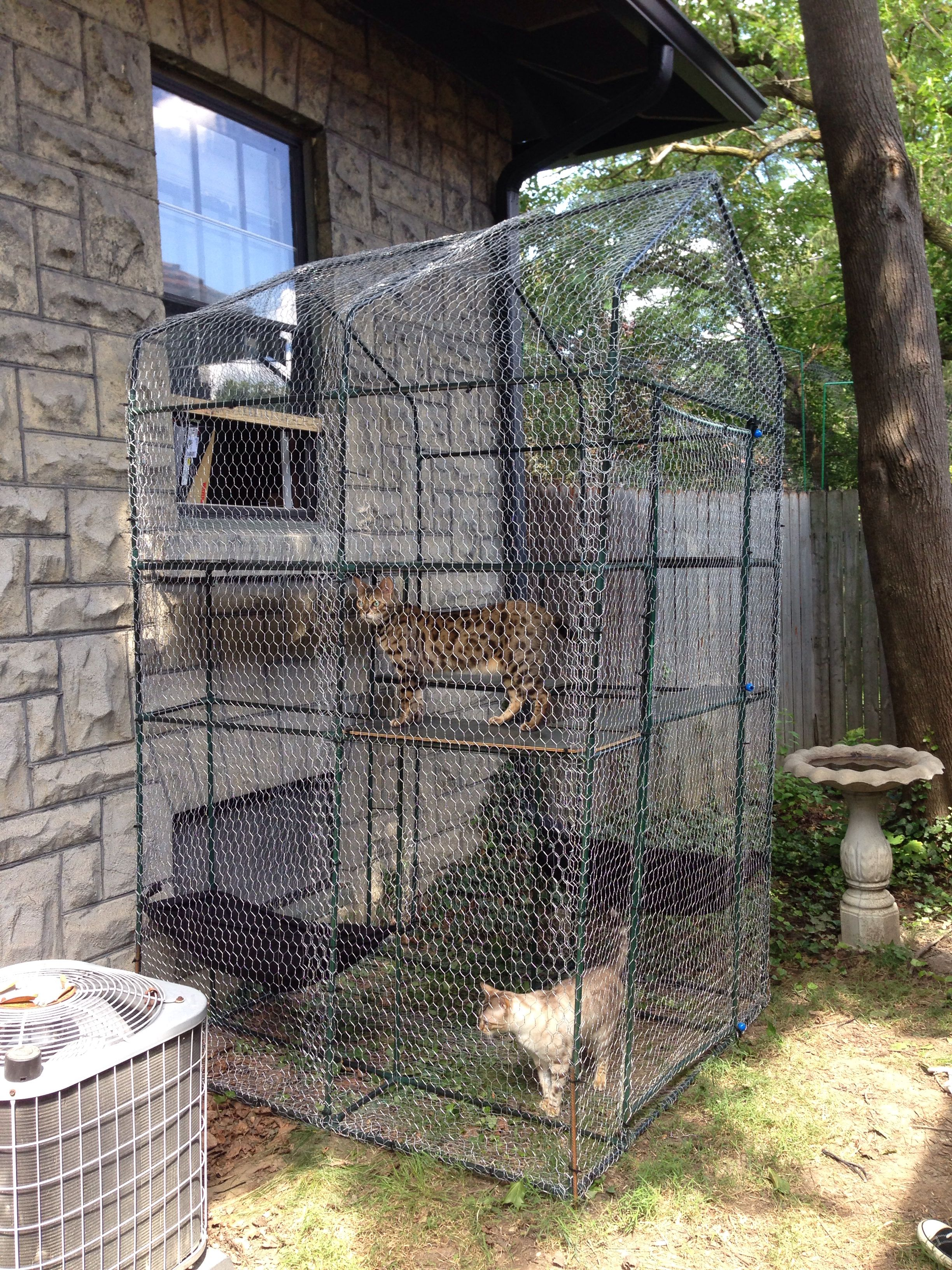 Catio For The Cats To Go Outside Via The Window I Modified A Small Greenhouse Frame I Found On Clearance Cat Patio Outdoor Pet Enclosure Catio Ideas For Cats
