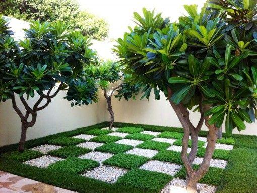 Backyard Indian Home Garden Images