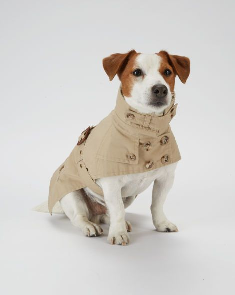 polo ralph lauren shoes 10-50p puggle dog