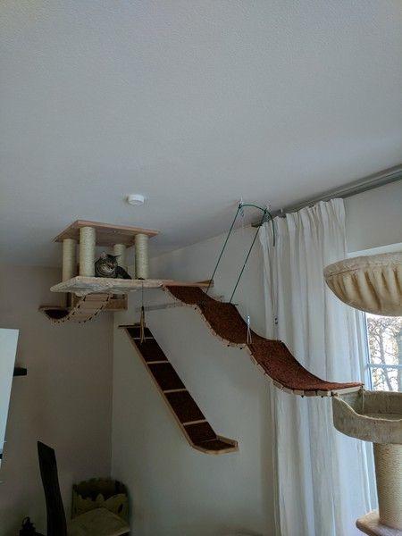Katzenbaum für große Katzen / Kratzbaum für die Wand - Tolle Katzen Kletterwand, Katzenkletterwand, Kletterwand Katze